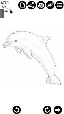 如何绘制海洋动物 how