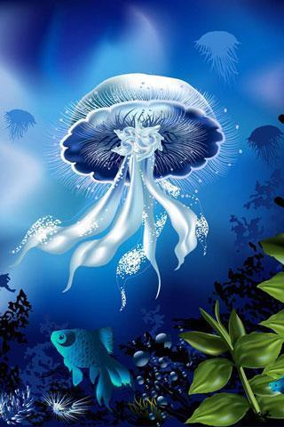 海底世界壁紙下載|海底世界壁紙手機版