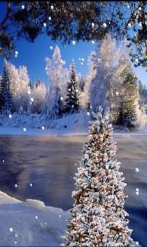 Snowy Snow