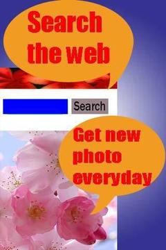 Web浏览器搜索器