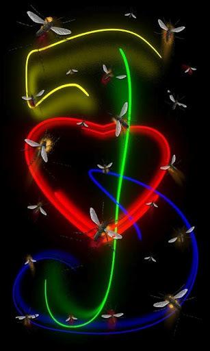 霓虹灯的爱