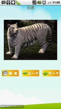 看图识字动物篇
