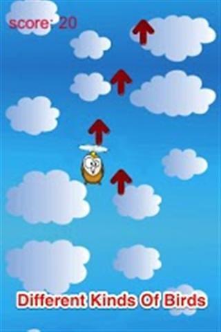 飞翔的鸟儿截图(3)