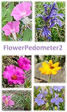 Flower Pedometer 2