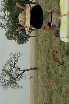 Hugo - Safari Movies