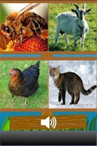 0 动物声音测试简介   根据动物的叫声猜测动物的种类,看你能答对多少