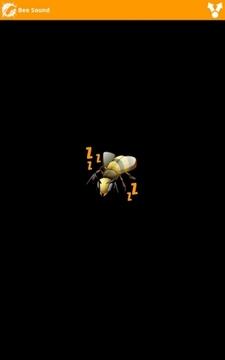 蜜蜂的声音