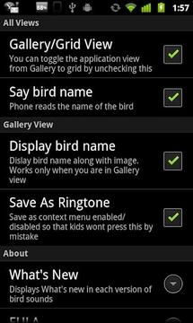 鸟的声音和铃声
