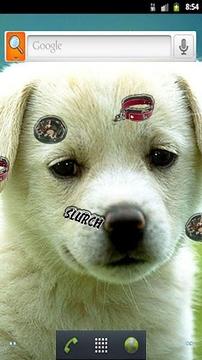 Puppy Live Wallpaper 2