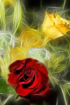 3D爱情之花