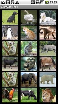 Baby Zoo Free