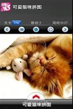 可爱猫拼图