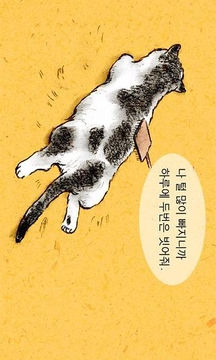 고양이 키스