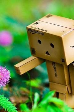 可爱的Danbo纸盒人