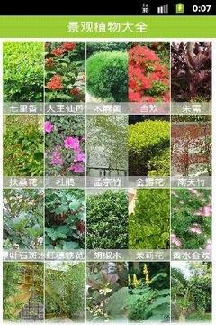 景观植物大全