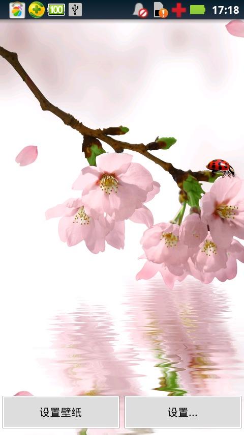 春天桃花动态壁纸截图(1)