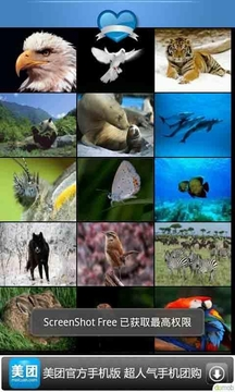走进动物世界