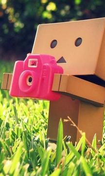 纸箱人的爱