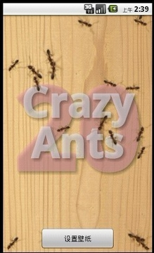 CrazyAnts