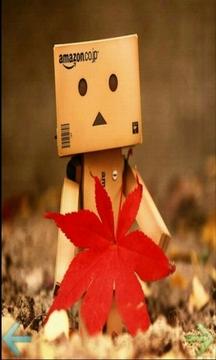 纸盒机器人
