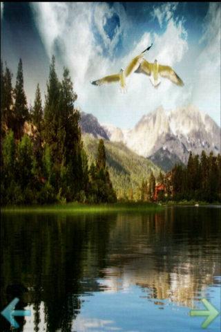 自然界景物