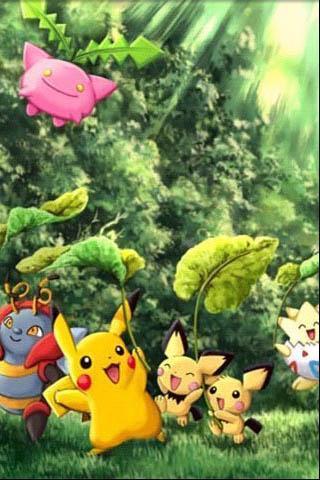神奇宝贝壁纸 pokemon wallpaper