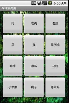 森林协奏曲