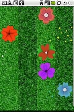 小花屏幕插件 Daisy Garden Lite