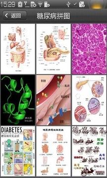 糖尿病拼图