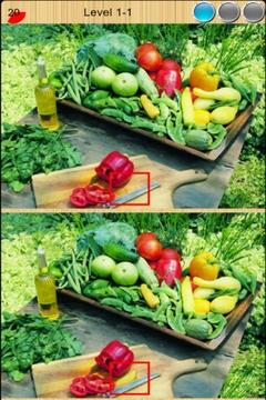 蔬菜大找茬