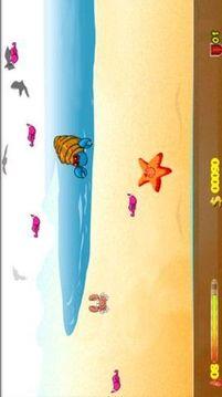 沙滩上的螃蟹
