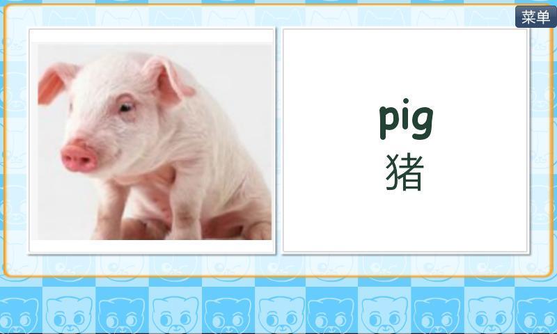 动物大全英语卡