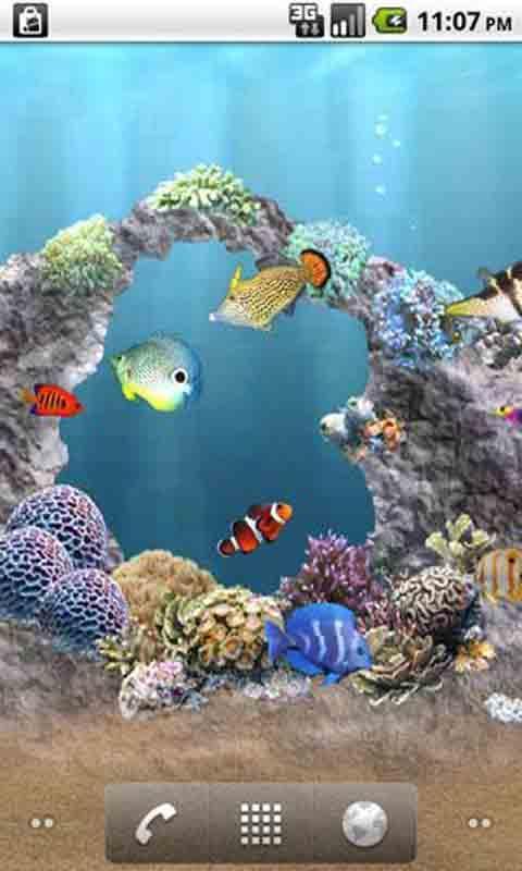 主题 海底世界动态壁纸