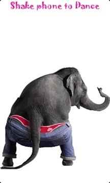 跳舞的大象