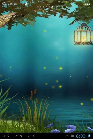 萤火虫森林仙女