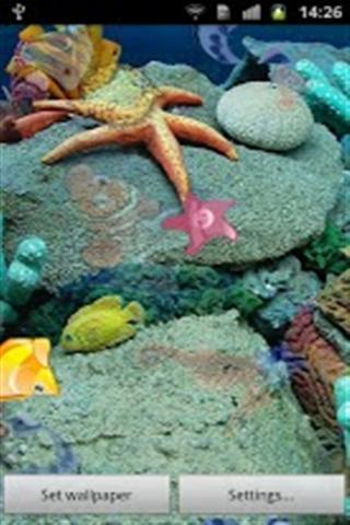 海洋生物动态壁纸下载_海洋生物动态壁纸手机版_最新
