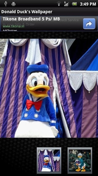 Donald Duck's Wallpaper