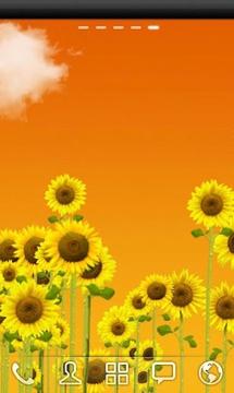 ♥向日葵免费