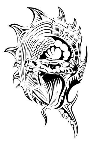 纹身手稿 金蟾分享展示