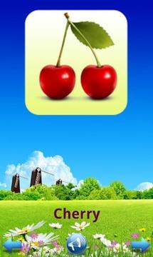水果的儿童图书