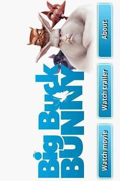 Big Buck Bunny Movie App