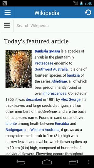 手机怎么打开维基百科