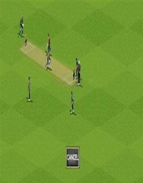 最终板球2011