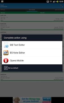 Rapid Downloader