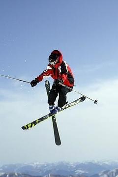 自由式滑雪说明