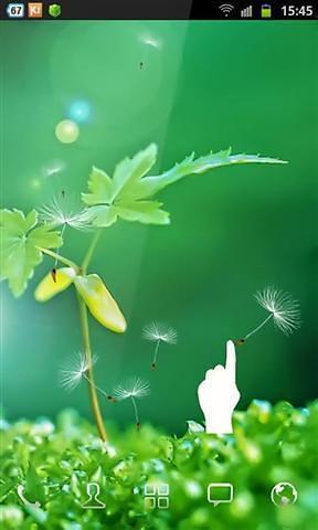 首页 应用中心 聊天.通讯 绿色奇迹动态壁纸
