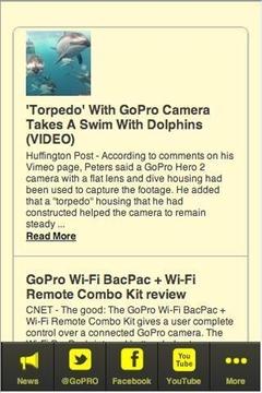 GoPro Fans