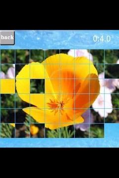 puzzle(flower)