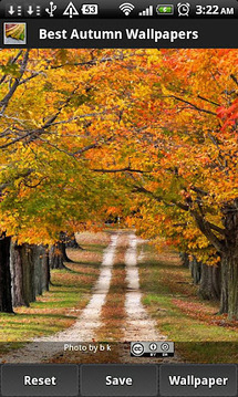 Best Autumn Wallpapers