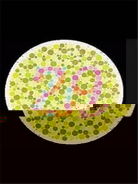色盲测试图